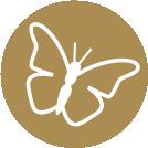 Butterflies Bereavement Support